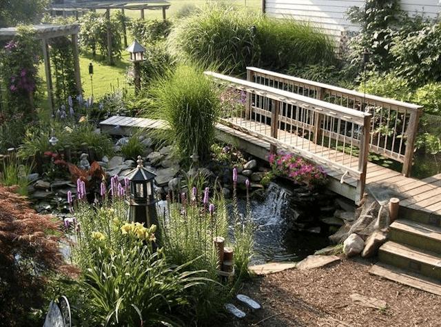 Ландшаштный дизайн пруда