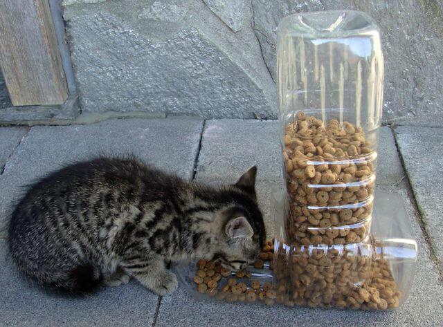 Кормушка из бутылки для котейки