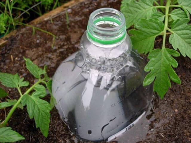 Система полива из пластиковой бутылки