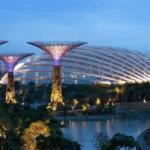 Архитектура и дизайн Gardens by the Bay — уникальный сад в Сингапуре