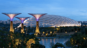 gardens by the bay - Парк в Сингапуре