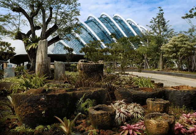 Сказочный парк в Сингапуре
