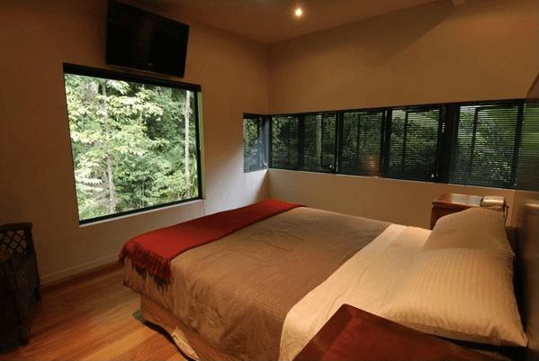 Дом в тропиках Австралии HP tree house