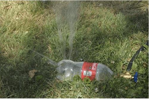 Пластиковая бутылка - распылитель для орошения